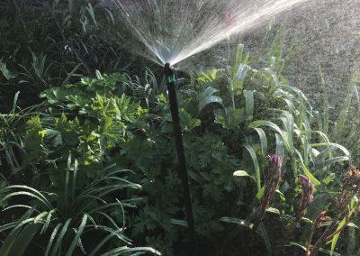 Mini-Spray-irrigation-south-west-london