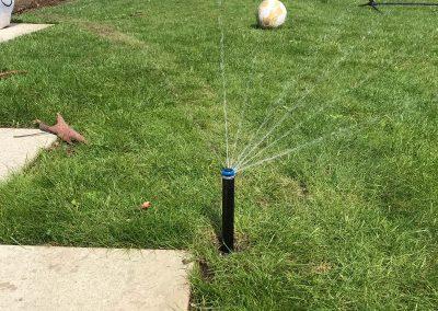 lawn-irrigation-pop-up-guildford