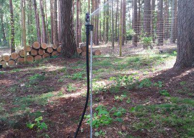 wood-watering-irrigation-farnham